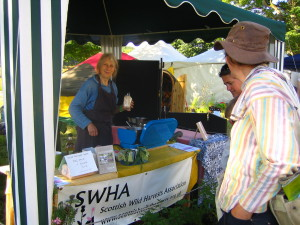Cooking demos at the Scottish Wild Harvests Association stall, part of the Big Tent 2012 book launch