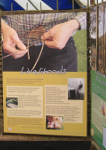 Photo of the Reforesting Scotland exhibition at Touchwood in 2007