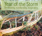 Cover of Reforesting Scotland's 'Year of the Storm' book