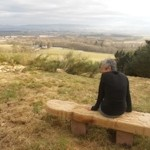 The view over Strathmore and Alyth community Orchard