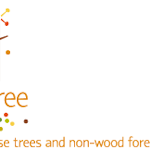 StarTree project logo, with strapline